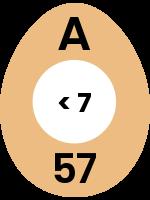 egg54