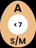 egg64