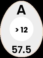 egg117