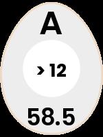 egg118