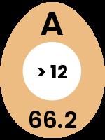 egg142