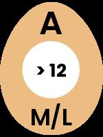 egg37