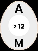 egg59