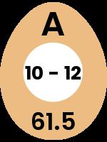 egg109