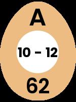 egg103