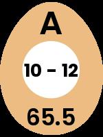 egg80