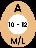 egg139