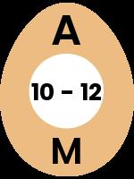 egg113