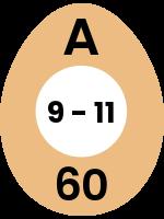 egg112