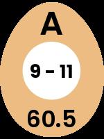 egg68