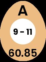 egg144