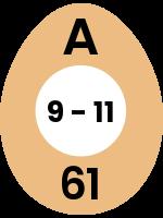 egg127