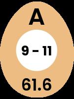 egg143