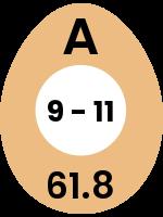 egg23
