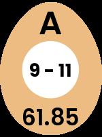 egg111