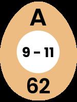 egg67