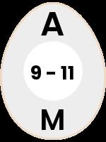 egg47
