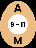 egg95